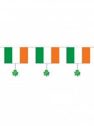 Slinger met Ierland