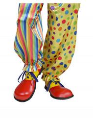 Clown schoenen voor volwassenen