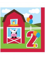 18 Kleine boerderij 2 jaar papieren servetten