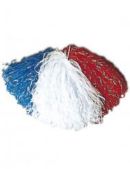 Pompon in Nederlandse kleuren