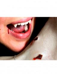 Schmink kit dubbele vampieren beten - Premium