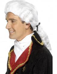 Witte barokpruik voor volwassenen