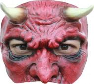 Duivel 3/4 masker voor heren Halloween