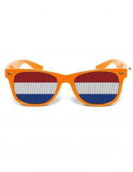 Grappige bril Nederland