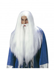 Tovenaarspruik met baard voor volwassenen