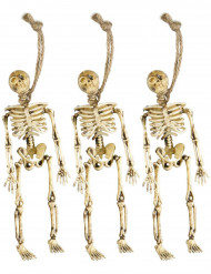 Halloween decoratie hang skeletten