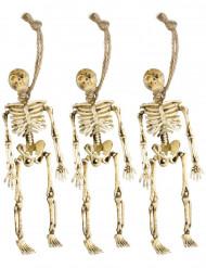 Halloween decoratie hang skeletten