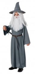 Gandalf The Hobbit™ kostuum voor kinderen