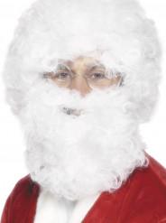 Baard en pruik in het wit voor volwassenen Kerst