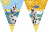 Vlaggetjes slinger van Olaf™