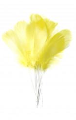 12 gele veren op stokjes