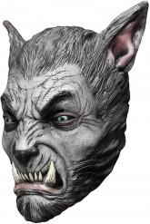 Grijze weerwolf masker voor volwassenen