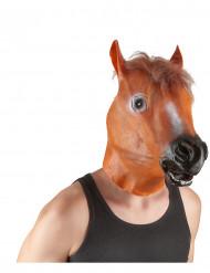 Paardenmasker voor volwassenen