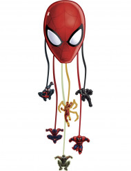 Pinata van Spiderman Web Warriors™