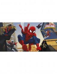 Spiderman™ muurdecoratie