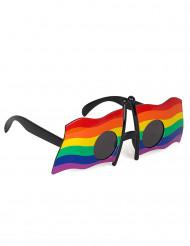 Veelkleurige bril met vlag voor volwassenen
