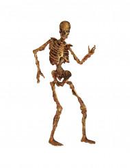 Halloween decoratie van skelet 180 cm