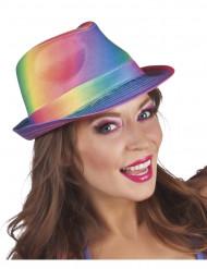 Veelkleurige borsalino hoed voor volwassenen