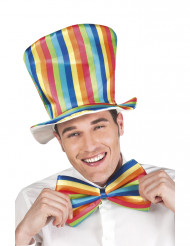 Veelkleurige clown setje voor volwassenen