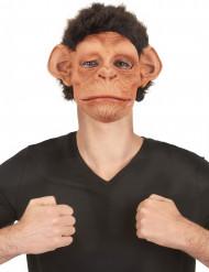 Luxe latex chimpansee masker voor volwassenen