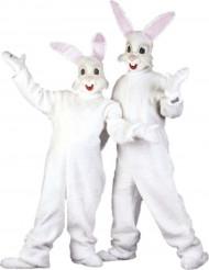 Konijn mascotte kostuum voor volwassenen