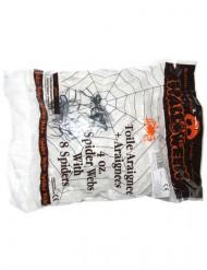 Set spinnenweb decoratie met spinnen Halloween