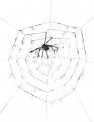 Reuze spinnenweb met spin 2.90 m Halloween