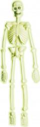 Fosforescerend skelet decoratie Halloween