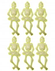 Set fosforescerende skeletten versieringen Halloween