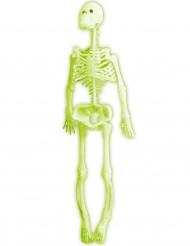 Fosforescerend gele skelet versiering Halloween