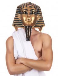 Egyptisch masker voor volwassenen