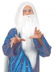 Tovenaarspruik en baard voor volwassenen