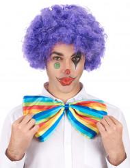 Paars afro / clown pruik voor volwassenen - Comfort