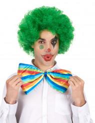 Groen afro / clown pruik voor volwassenen - Comfort