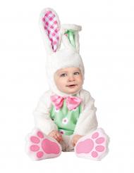 Konijn kostuum voor baby's - Luxe
