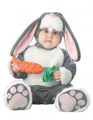 Konijn kostuum voor baby's - Premium
