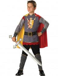 Ridder kostuum voor jongens - Premium