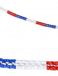2 supporter slingers Frankrijk