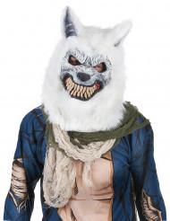 Wit wolven masker voor volwassenen