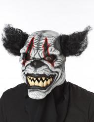 Verschrikkelijke clown masker voor volwassenen