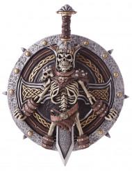 Viking schild en zwaard