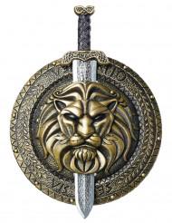 Gladiator gevechtsschild en zwaard