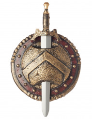 Spartaan / viking schild en zwaard