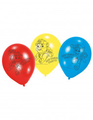 PAW Patrol™ ballonnen