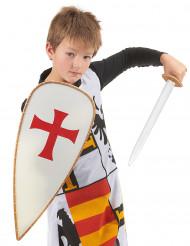 Ridderkostuum met accessoires voor kinderen