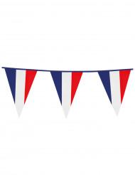 Franse supporter vlaggenlijn