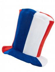 Frankrijk supporter hoge hoed met muziek