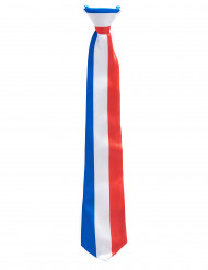 Driekleurige Frankrijk stropdas