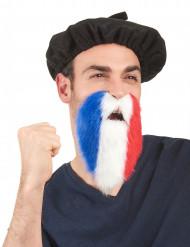 Driekleurige Frankrijk baard voor volwassenen