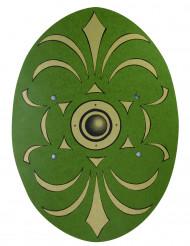 Groene en gouden schild van hout 35 x 49 cm